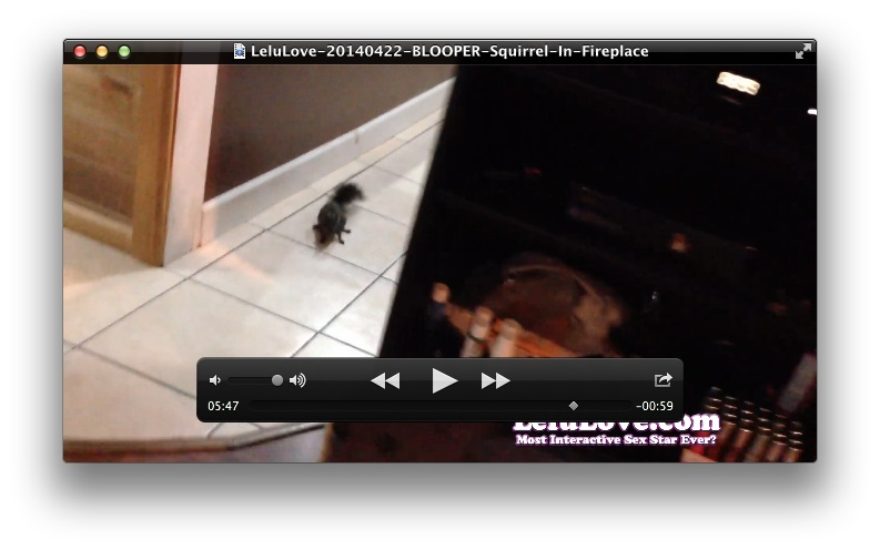 BLOOPER: Squirrel In Fireplace